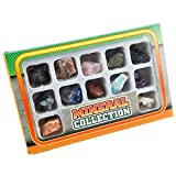 SUNYIK Gemstone Rocks Mineral Collection Box Introductory Earth Education Toy