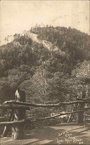 Deer Leap From Lone Trail Lodge Green Mountains, Vermont Original Vintage Postcard