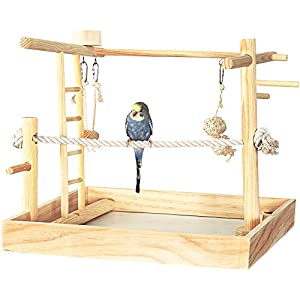 """You & Me 3-in-1 Playground for Birds, 15"""" L X 15"""" W X 16"""" H, 15 in 95"""