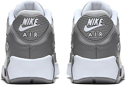 Nike - Zapatillas de deporte Air Max 90 2007 WOLF GREY/WHITE-COOL GREY