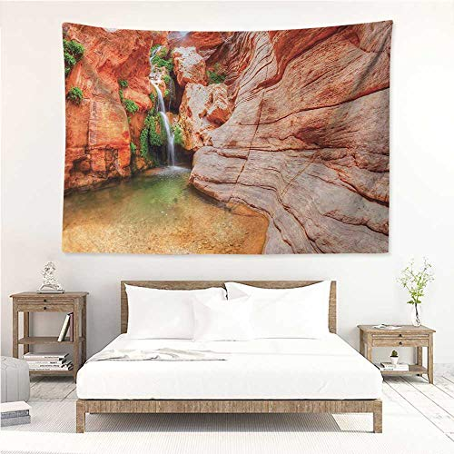 (Americana,Tapestries for Room Elves Chasm Colorado River Plateau Creek Grand Canyon Image Print 93W x 70L Inch Tapestry Wall Hanging Throw Scarlet Green Pale Brown)