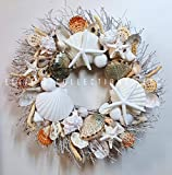 21'' Sea Shell Wreath on Birch Twig with Rare Blue Abalone Shells, Star Fish, Sea Urchins in 2 Designs