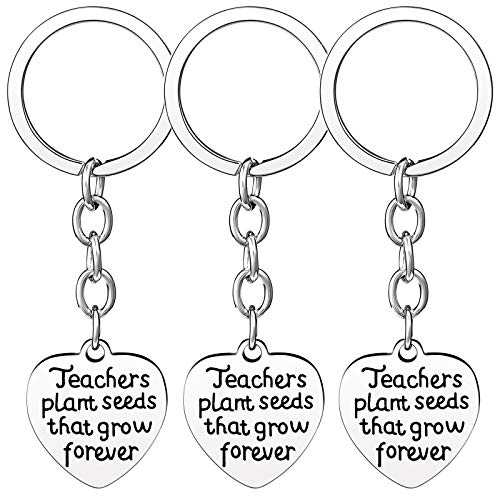 Nzztont Pack of 3 Teacher Bangles Gifts for Teacher Open School Gifts for Teachers Thank You Bangle Bracelets (3PCs Keychain Heart Style 17- Teachers Plant Seeds That Grow Forever) (Key Chain Plant)