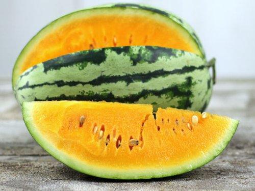 David's Garden Seeds Fruit Watermelon Orangeglo (Orange) 25 Heirloom Seeds
