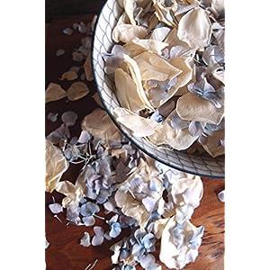 Dexon Power Something Blue Mix, Blue Hydrangea Petals & Ivory Rose Petals Freeze Dried - 5 Cups 73