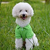 HuntGold Cute Lovely Pet Dog Cat Puppy Polo T-Shirt Suit Clothes Outfit Apparel Coat Tops(green size: M)