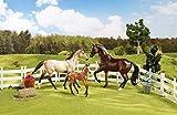 Breyer Horse Tacks - Best Reviews Guide