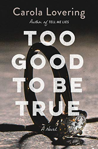 Book Cover: Too Good to Be True: A Novel