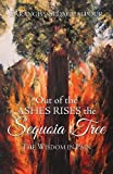 Search : Out of the Ashes Rises the Sequoia Tree: The Wisdom in Pain