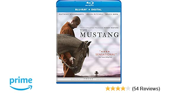 2ffd8123 Amazon.com: The Mustang (2019) [Blu-ray]: Matthias Schoenaerts ...