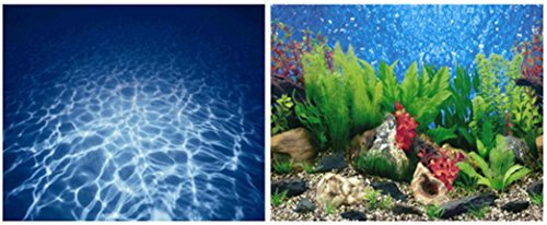 9019 20'' x 48'' Double Sided Fish Tank Aquarium Background Blue Sea / Green Plant by Happygfish