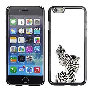 Cubierta protectora del caso de Shell Plástico || Apple Iphone 6 Plus 5.5 || Zebra Sonreír divertido @XPTECH
