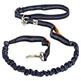 Premium Quality Hands Free Lightweight Reflective Bungee Dog Leash For Running, Walking & Hiking | 4-Foot Long Fits Sizes 28-48 (Navy/Orange)