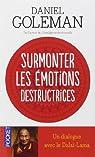 Surmonter les émotions destructrices : Un dialogue avec le Dalaï-Lama par Daniel Goleman