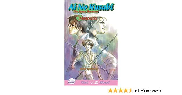 Ai no kusabi vol 5 v 5 reiko yoshihara katsumi michihara ai no kusabi vol 5 v 5 reiko yoshihara katsumi michihara 9781569707869 amazon books fandeluxe Gallery