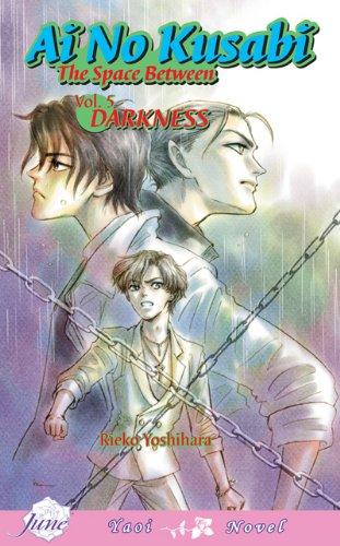 Ai No Kusabi Volume 5 (Yaoi Novel) (v. 5)
