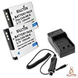 Two Halcyon 1200 mAH Lithium Ion Replacement Battery and Charger Kit for Sanyo DB-L80 and Sanyo VPC-CA100, VPC-CA102, VPC-CG10, VPC-CG100, VPC-CG20, VPC-CS1 , VPC-GH1, VPC-GH2, VPC-GH3, VPC-GH4, VPC-PD1, VPC-PD2 Digital Camcorder