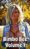 Bimbo Bee: Volume 1
