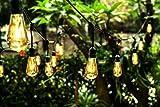 Ove Decors All-Season LED String Light with 24 Oversized Edison Light Bulbs, 48'