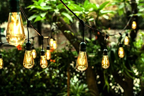 Price comparison product image Ove Decors All Season LED String Light with 24 Oversized Edison Light Bulbs,  48'