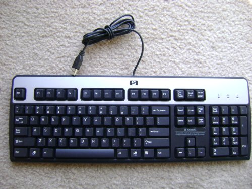 Genuine HP Hewlett-Packard KU-0316 Black/Silver USB Wired 104-Key Layout Keyboard Part Number: 434821-001 Model Number: KU-0316 - Princess Computer Keyboard