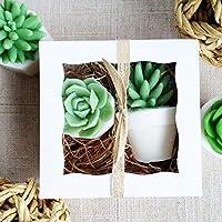 Succulent Handmade SOAP Gift Set Women for Garden Lovers/Birthday/Christmas/Under 30