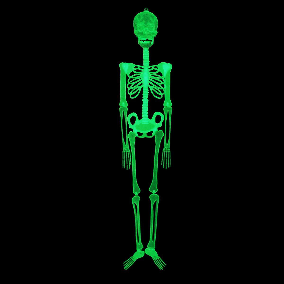 Halloween Luminou Human Skeleton Decoration Classroom Occasionally Adjustable - 1PCs by Unknown (Image #4)