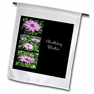 Taiche - Birthday - African Daisies - Birthday Wishes Collage - daisy, south african daisy, cape daisy, blue eyed daisy, african daisy - 18 x 27 inch Garden Flag (fl_47019_2)