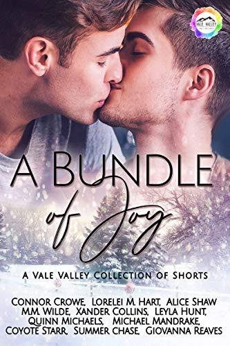 a bundle of joy a winter romance vale valley book 12