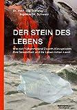 Der Stein des Lebens: Wie das Vulkanmineral Zeolith-Klinoptilolith Ihre Gesundheit und Ihr Leben ret