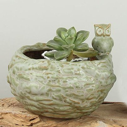 Better-way Owl Ceramic Candle Holders Tea Coffee Sugar Jars Storage Canisters Orchid Flower Pot Succulent Planter 4.7 Inch(Green, Country Rustic)