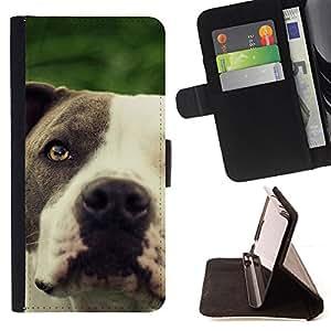 KingStore / Leather Etui en cuir / Apple Iphone 5C / American Pit Bull Terrier blanco del perro