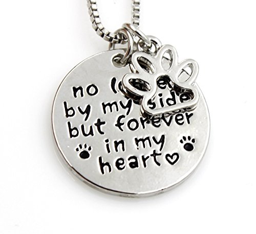 Stunning – No longer by my side but forever in my heart! Necklace – pet loss dog cat lovers pendant – quote words 51pwG2aRKtL