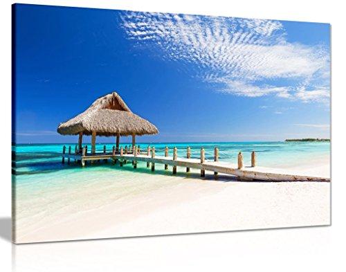 (Tropical White Sandy Beach Dominican Nature Seascape Coast Canvas Wall Art Print (36x24in))