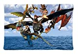 How To Train Your Dragon 2 Pillowcase Cover Design For Custom Zippered Pillow Cases 20x30 (one side)