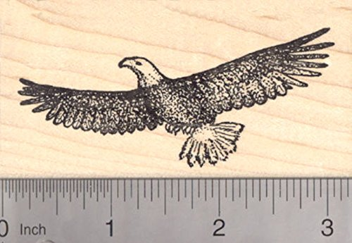 Bald Eagle Rubber Stamp, Bird in Flight