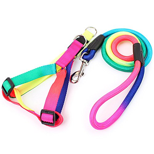 Gigamax Rainbow Dog Harness And Leash Set 120cm Long Durable