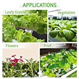 VIVOSUN Hydroponic Grow Kit, 3 Layers 90 Plant