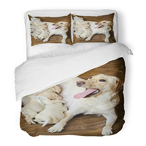 Set Group of Newborn White Labrador Puppies Sucking Milk Decorative Bedding Set with 2 Pillow Shams Full/Queen Size ()