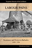 Labour Pains, Henderson Carter, 9766374058