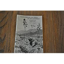 Cacti, Shrubs, and Trees of Anza-Borrego: An Amateur's Key for Identifying Desert Plants