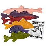 fish printing - Nasco Life/form Rubber Fish Replica Set - 6 small species (small scale)