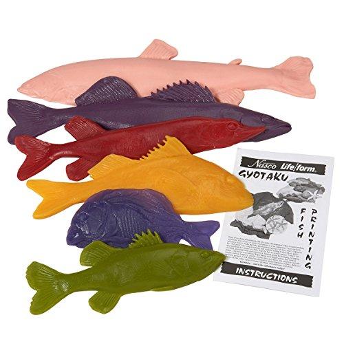 Nasco Life/form Rubber Fish Replica Set - 6 small species (small scale) (Replica Fish Walleye)