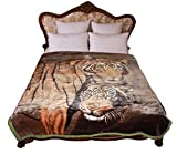 STI Heavy Thick Plush Korean Style Luxury Super Soft Mink Blanket ,9 Pounds Two Ply Reversible Throw Blankets, Queen Size, Brown Tiger