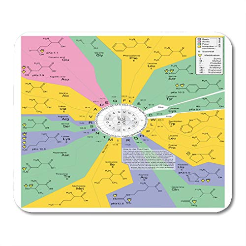 "Aikul Mousepad Codon Genetic Code Diagram Showing Amino Acid Chart Mouse Mat 9.5"" x7.9"" Mouse Pad Suitable for Notebook Desktop Computers Office Accessories"