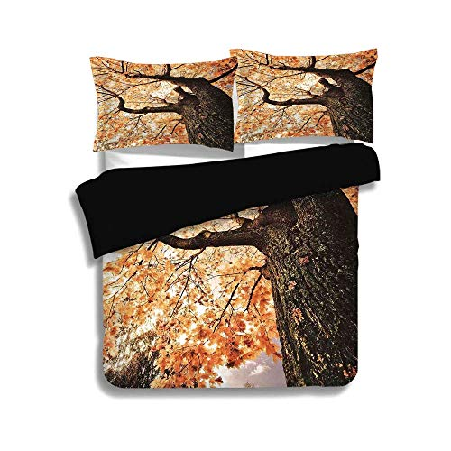 (BISHUO Black Duvet Cover Set Twin Size,Forest Home Decor,Body of Old Tree Seedling Botany Woodsy Roots Falling Maple Leaf Design,Orange Brown,3 Pcs Bedding Set 2 Pillow Shams)