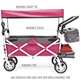 Creative Outdoor Push Pull Collapsible Folding Wagon Stroller Cart for Kids | Silver Series | Beach Park Garden & Tailgate | Pink