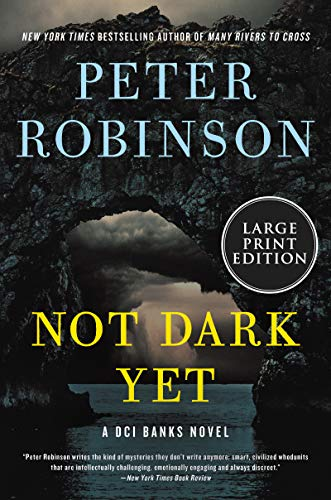 Book Cover: Not Dark Yet: A Novel