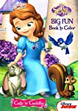 Disney® Sofia the First Coloring and Activity Book Set (2 Books ~ 96 pgs each)