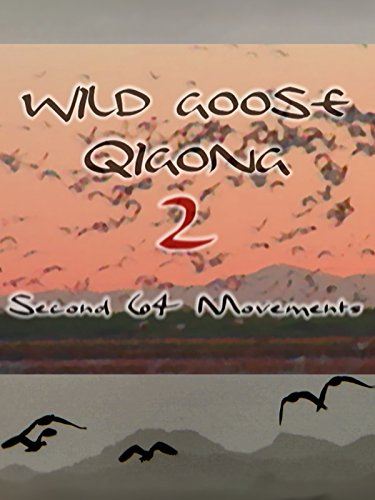 wild-goose-qigong-ii-second-64-movements-with-dr-hu-remastered